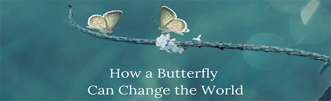 How a Butterfly Can Change the World