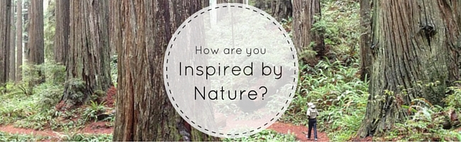 How Are You Inspired by Nature?
